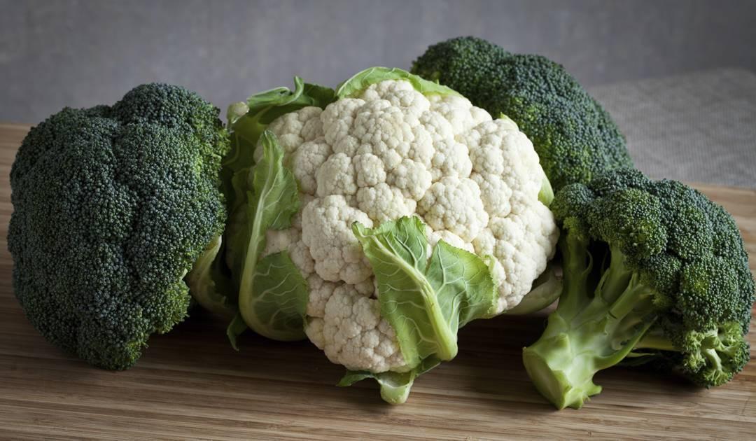Чем брокколи отличается от цветной капусты. капуста брокколи.  овощ, который по внешнему виду похож на цветную капусту и отличающийся от нее только окраской.
