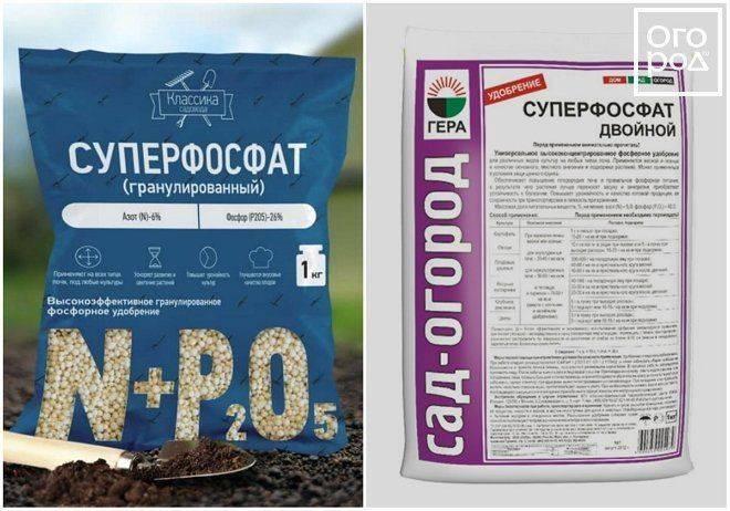 Фосфорные удобрения: что это, как производятся, применяются