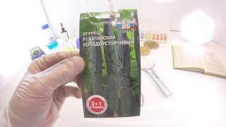 Лучшие сорта китайских огурцов и особенности их выращивания