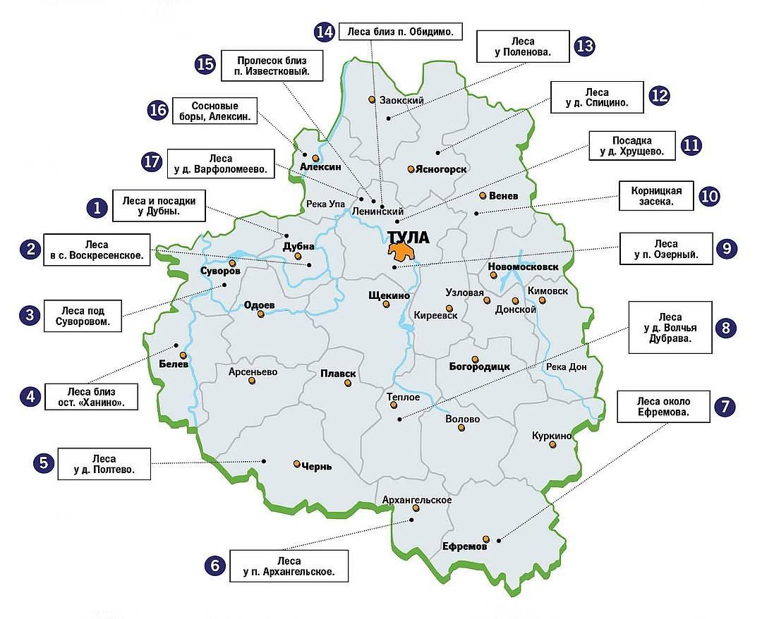 Грибы ульяновской области в 2020 году: грибные места, карта, фото