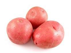 Ассоль сорт картофеля