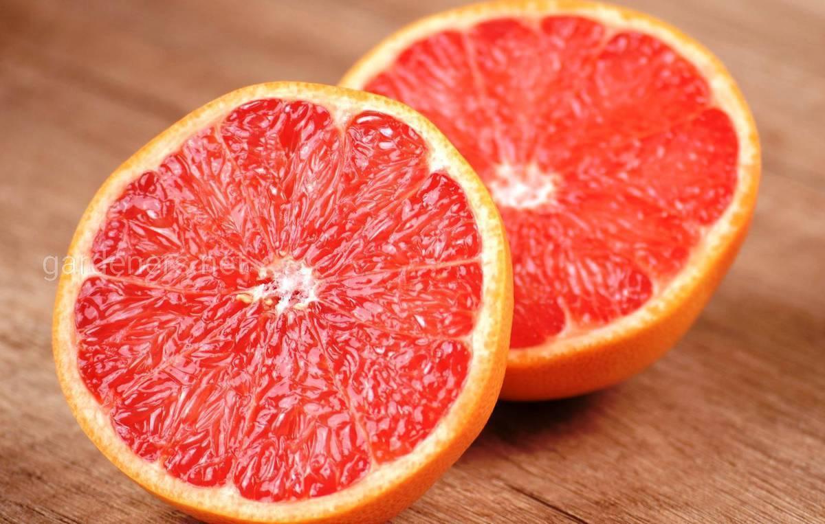 Витамины при диете | названия и отзывы о витаминах при диете | компетентно о здоровье на ilive