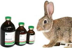 Лечение бактериальных инфекций у животных в ветеринарии: использование дитрима, инструкция по применению