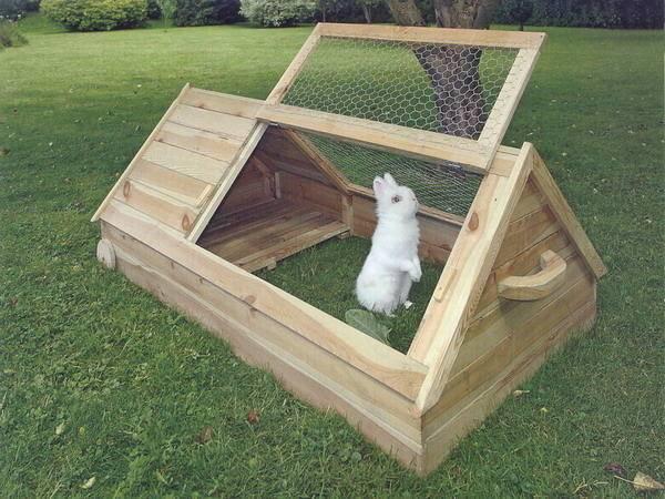 Домик для декоративного кролика: как сделать красивое жилище из простых материалов