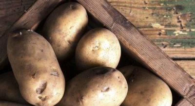 Косить или нет картошку? - сад, огород - страна мам
