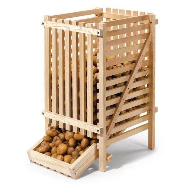 Способы хранения картофеля в квартире