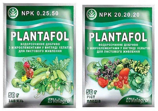 Как использовать удобрения «плантафол» — инструкция по применению
