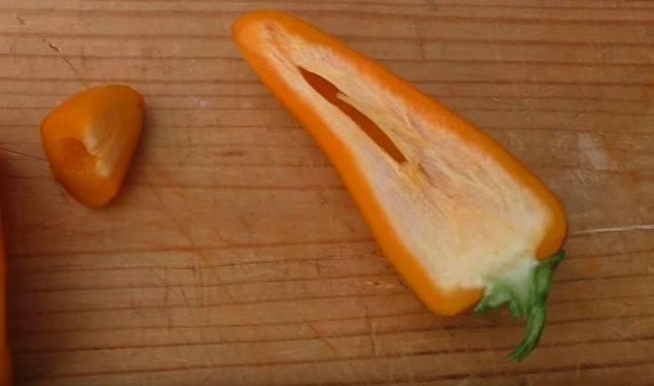 Описание сорта перца Лисичка — особенности выращивания