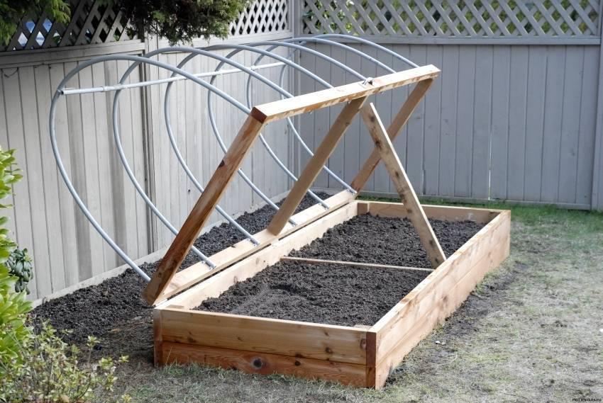 Перец в теплице - пошаговая инструкция по выращиванию и уходу для начинающих (105 фото)