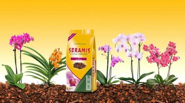 Серамис для орхидей: что это такое, какие виды цветов можно выращивать в этом субстрате и что понадобится для посадки, достоинства и недостатки грунта seramis