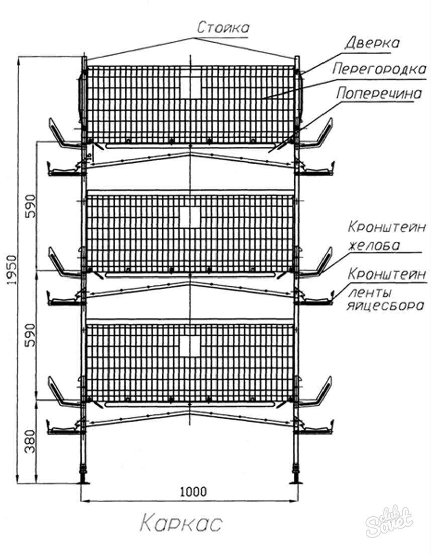 Клетки для перепелов: изготовление в домашних условиях, пошаговые инструкции различных вариантов