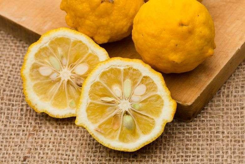 Японский лимон-юзу | cooks - повара казахстана