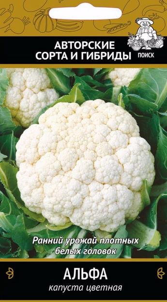 Высокоурожайные сорта цветной капусты