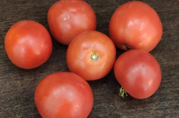 Томат верлиока f1: отзывы, секреты выращивания, описание с фото