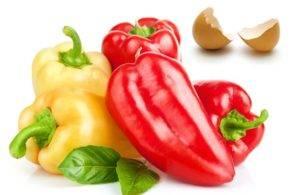 Когда высаживать перец в открытый грунт: какую температуру выдерживают