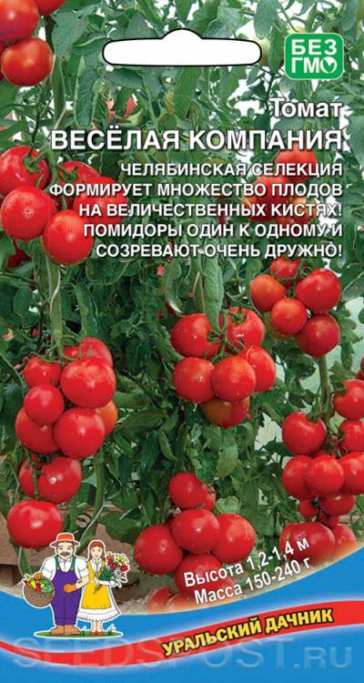 """Томат """"марьина роща"""": описание, урожайность, отзывы, фото"""