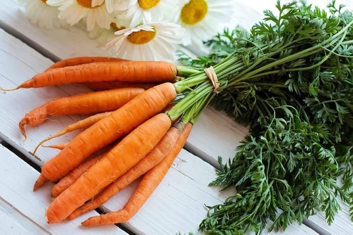 Как быстро прополоть морковь от сорняков: обработка керосином, гербицидами и руками