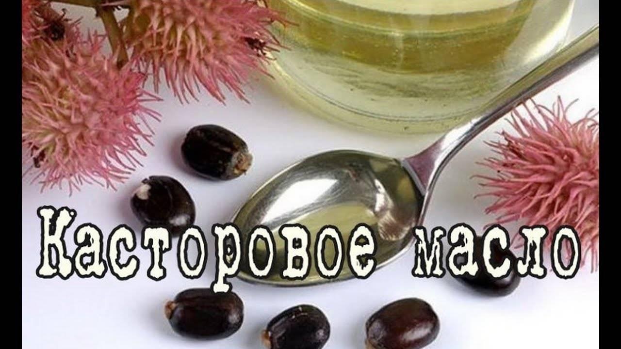 Касторовое масло для цветов как удобрение: как использовать, отзывы и советы ( 8 фото )