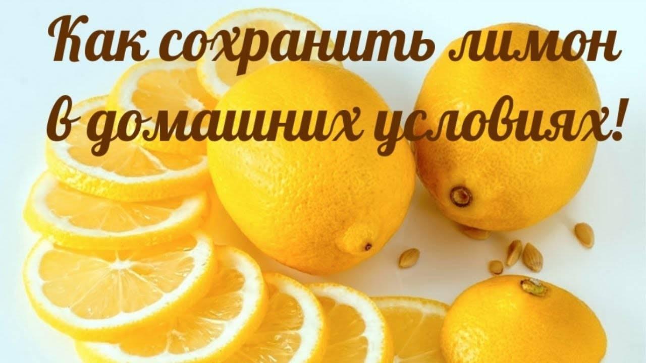 Как хранить лимоны в домашних условиях: лучшие способы и выбор места на зиму