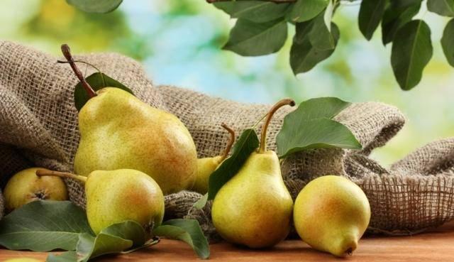 Можно ли есть лимон при грудном вскармливании и когда допустимо вводить в рацион этот фрукт?