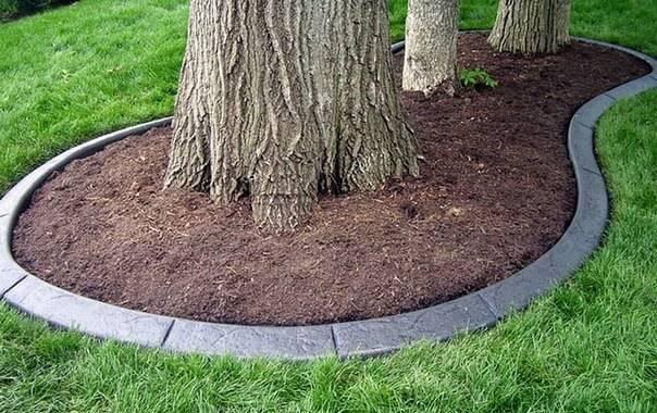 Как оформить приствольные круги плодовых деревьев фото - инженер пто