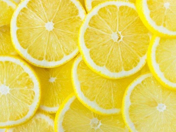 Лимон. польза лимонов для организма человека