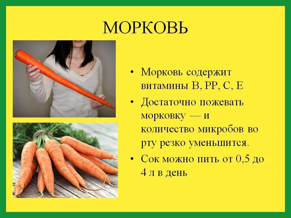 Содержание витаминов в моркови, польза для здоровья
