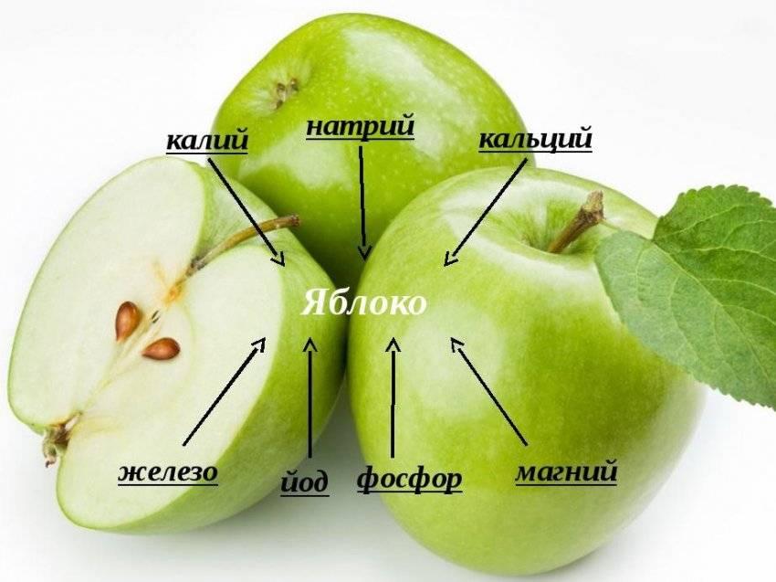 Сколько углеводов в яблоке. какую пользу или вред они могут нанести