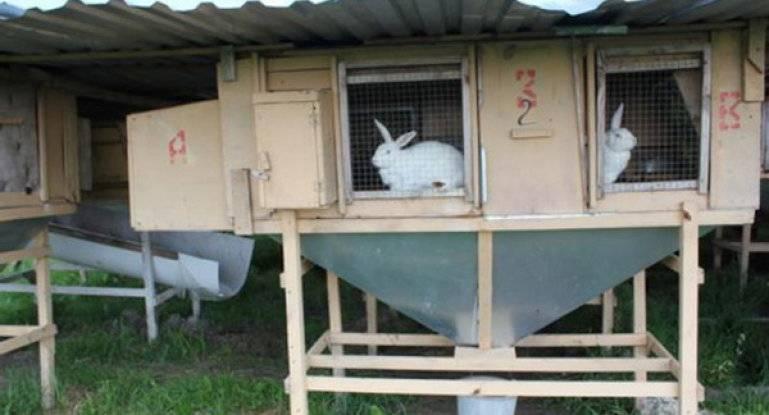 Как построить клетку для кроликов своими руками