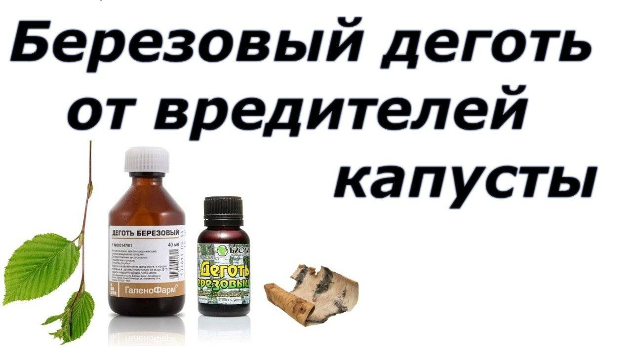 Какие химикаты подойдут для обработки капусты от вредителей? чем эти препараты отличаются от народных средств?
