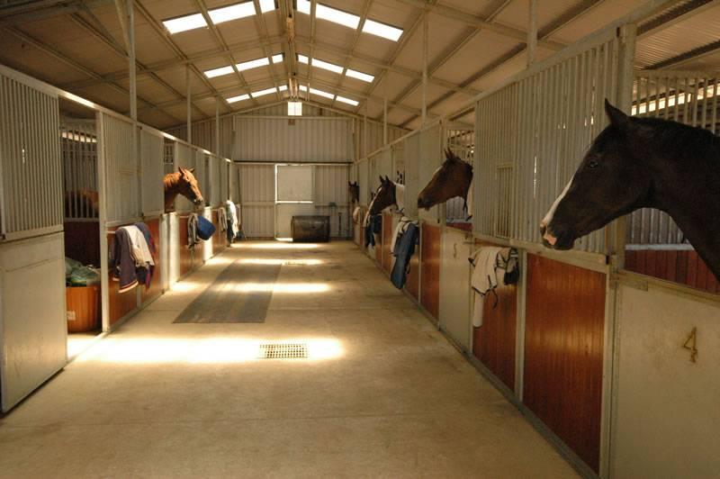 Конюшня, стойло, загон для лошади: разбираем со всех сторон