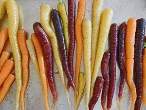 Почему у моркови оранжевый цвет