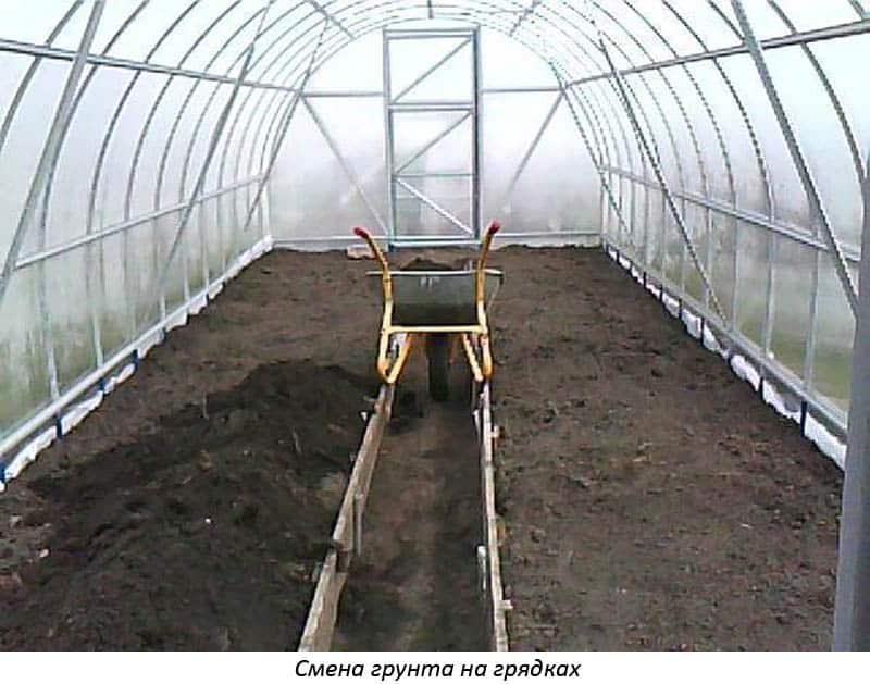Обработка теплицы из поликарбоната весной и осенью: особенности обработки перед посадкой и после сбора урожая
