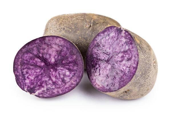 Фиолетовый картофель: сорта, описание, отзывы,