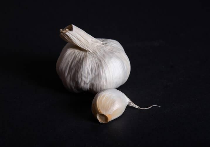 Бизнес идея выращивание чеснока с расчетами