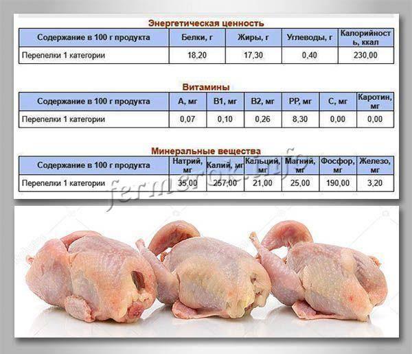 Гусиное мясо: польза и вред | польза и вред