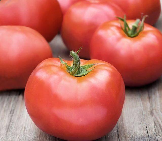 Томат тарпан, характеристика и описание, фото, отзывы об урожайности