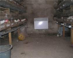Обогрев курятника зимой естественным и искусственным способом