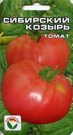 Лучшие сорта помидор для сибири - сам себе сад