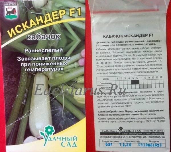 Кабачок искандер f1: описание сорта и уход
