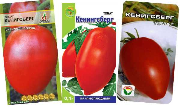 Характеристики томатов «кенигсберг»