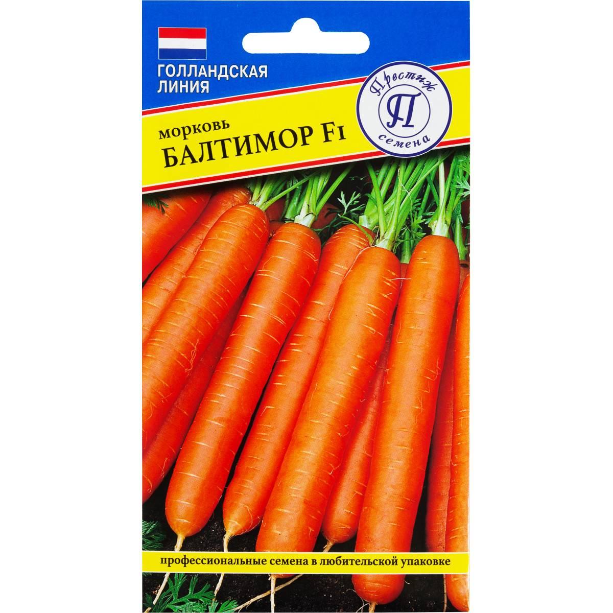Какие сорта моркови вас порадовали? хочу купить семена.