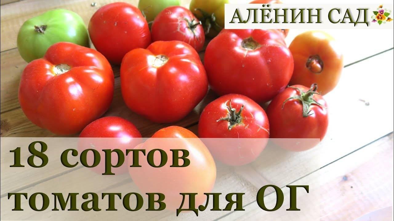 Лучшие, сладкие и урожайные сорта крупноплодных томатов