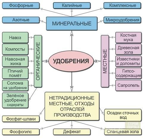 Виды и особенности различных органических удобрений