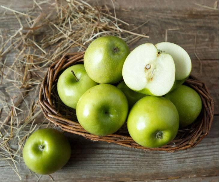 Яблоки семеренко описание, полезные свойства, калорийность