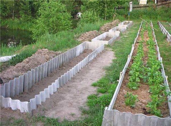 Как обустроить огород на дачном участке - 120 фото лучших вариантов