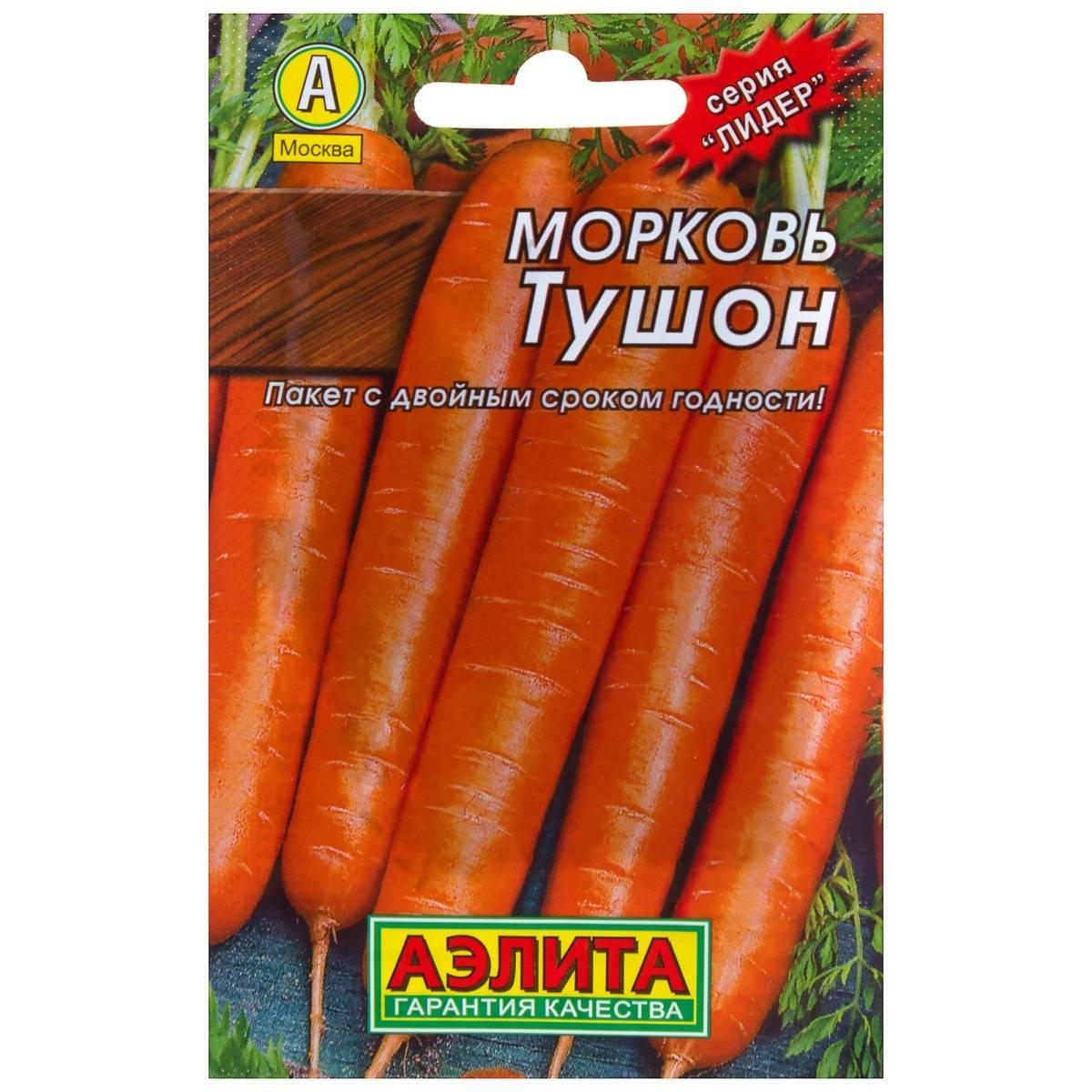 Сорт моркови тушон