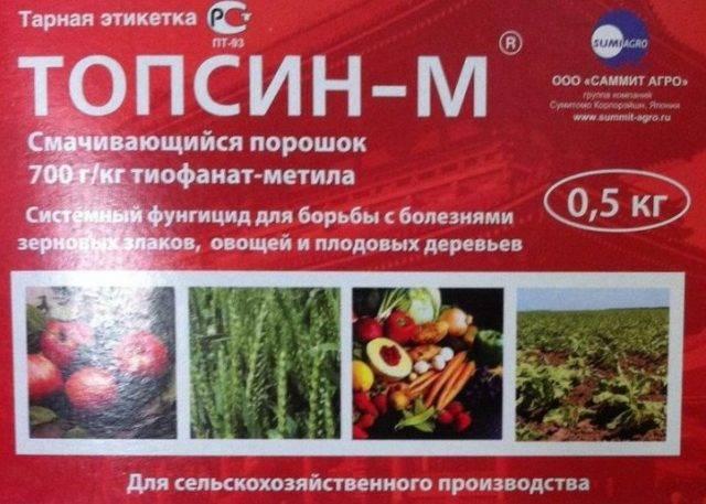 Почему сохнет вишня после цветения, что делать - дачные советы.ру