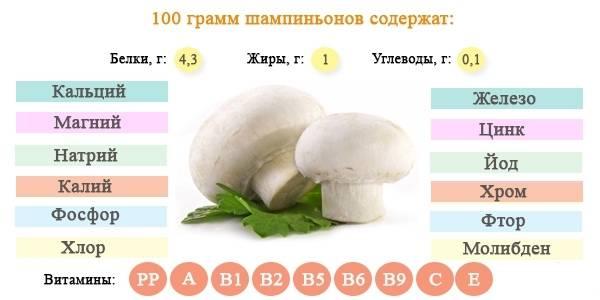 Можно ли есть грибы при похудении: меню и рецепты блюд