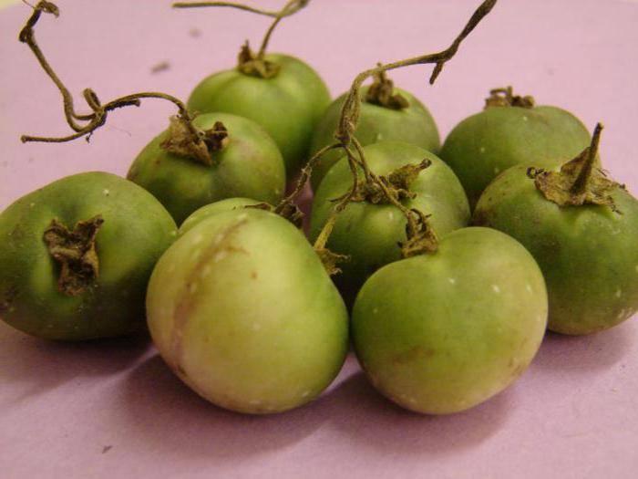 Как называется плод картофеля: клубень или ягода